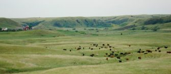 Rancher Encourages Utilizing Cost Share Programs