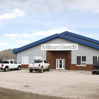 Millborn Seeds - Rapid City